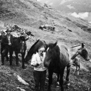 Alpgebiet Korb von Anonym