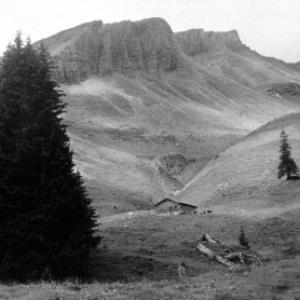 Alpe Korb von Anonym