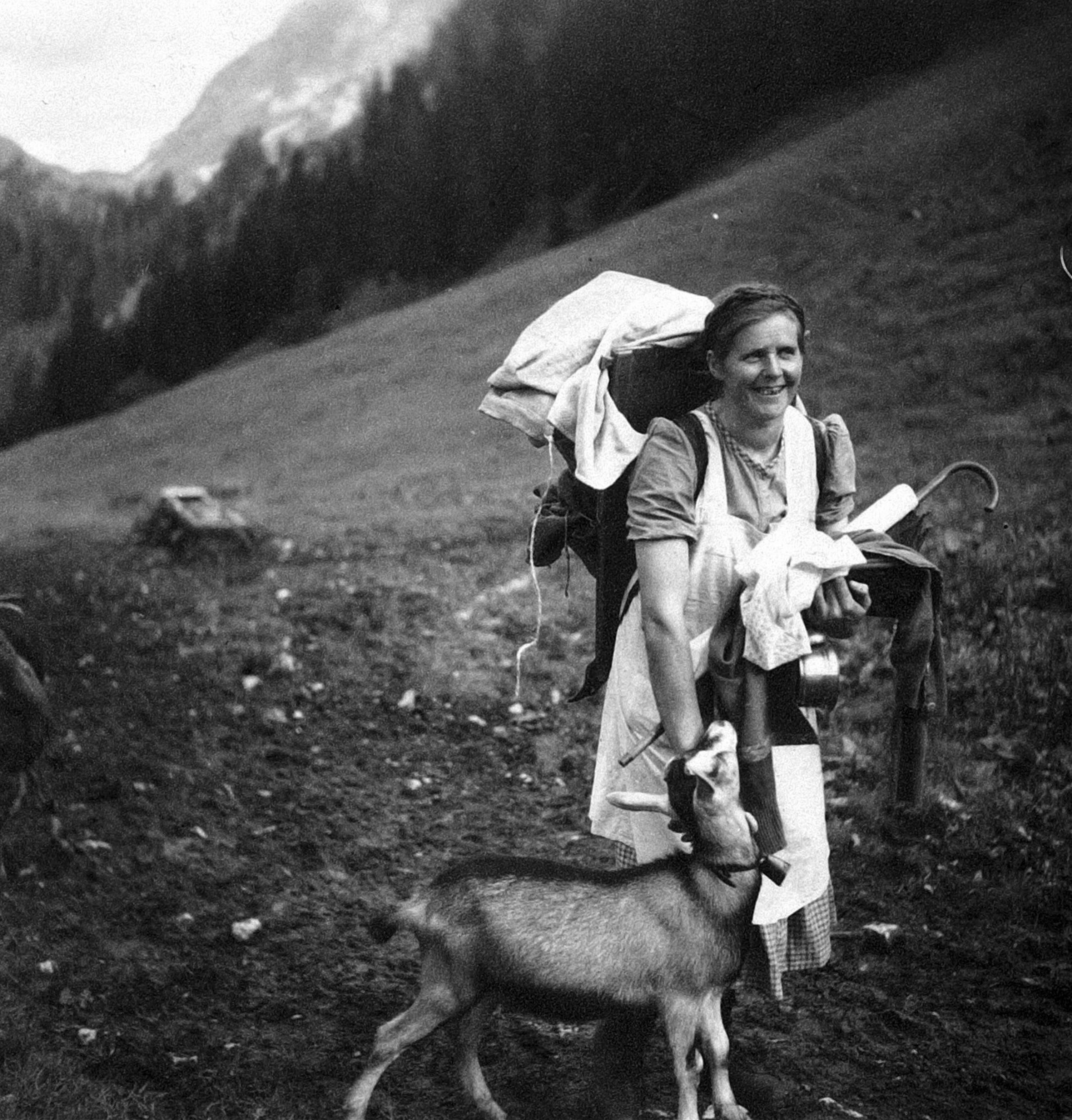 Alpe Treu, Schröcken von Anonym