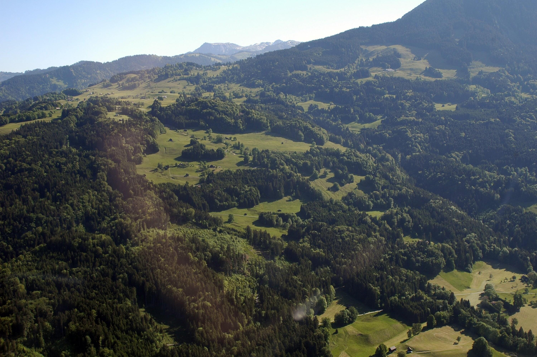 Satteins - Landwirtschaft von Amt der Vorarlberger Landesregierung Abteilung Raumplanung