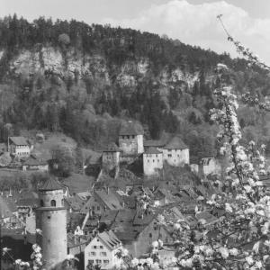 Feldkirch / Vorarlberg mit Schattenburg und Katzenturm von Risch-Lau