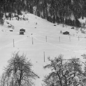 Aufnahme von der Ortsparzelle Poller in Dalaas / Josef Wilhelm Purtscher von Purtscher, Josef Wilhelm