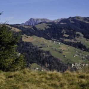 Übersaxen, Blick von Gulmalpe ins Laternsertal / Helmut Tiefenthaler von Tiefenthaler, Helmut