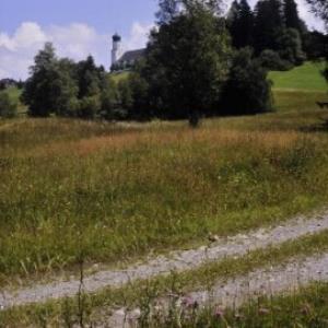Sulzberg, Weg nach Oberköhler / Helmut Tiefenthaler von Tiefenthaler, Helmut