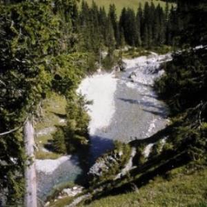 Lech, Lechfluss Nähe Älpele / Helmut Tiefenthaler von Tiefenthaler, Helmut