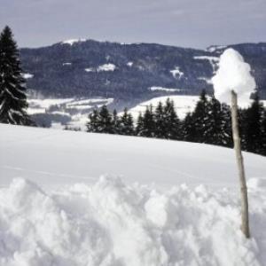 Sulzberg, Winterweg Unterköhler / Helmut Tiefenthaler von Tiefenthaler, Helmut