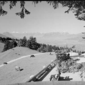Blick vom Pfänder gegen Drei-Schwestern - Pizol - Balfrieser Berge und Alpsteingruppe von Risch-Lau