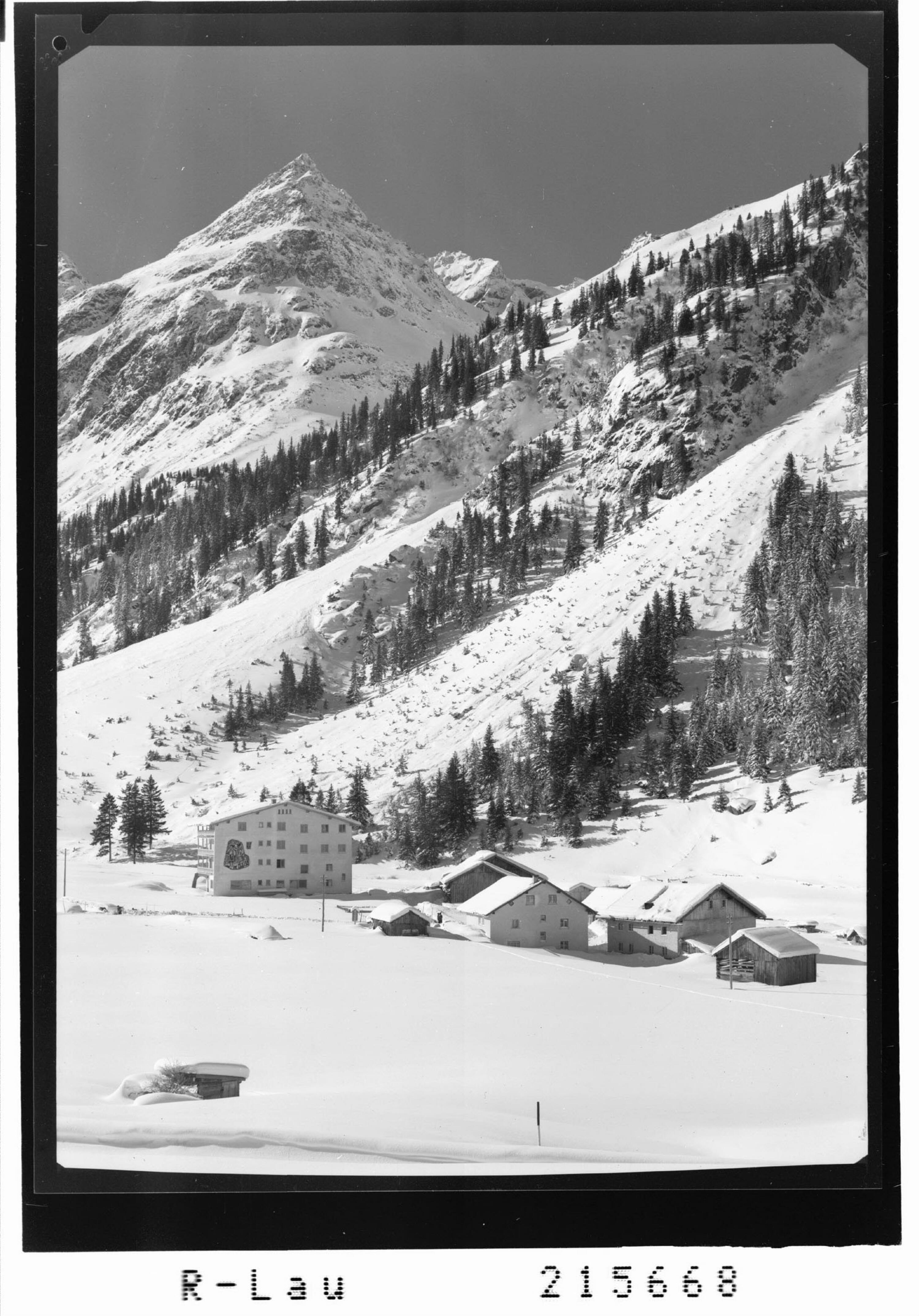 Weisswald 1575 m, Pitztal / Tirol gegen Steinkogel 2635 m