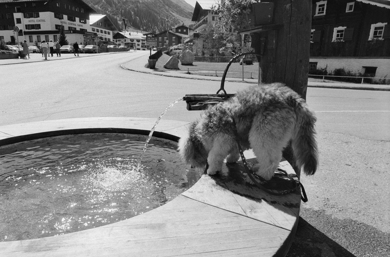 Lech, Brunnen / Rudolf Zündel von Zündel, Rudolf