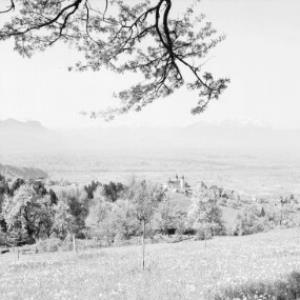 Bildstein gegen Balfrieser Berge und Alpsteingruppe von Risch-Lau