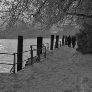 Bregenzer Seeanlagen im Winter / Rudolf Zündel von Zündel, Rudolf