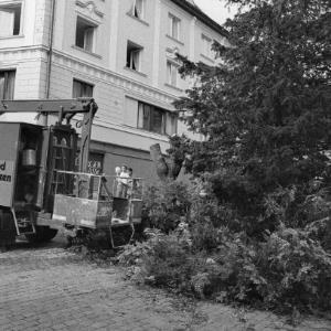 Baumfällung in der Kirchstraße / Rudolf Zündel von Zündel, Rudolf