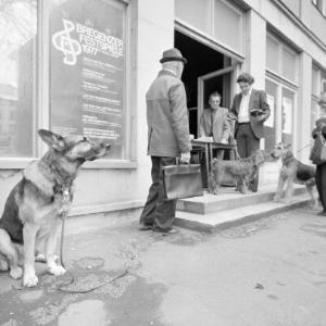 Hundemusterung / Rudolf Zündel von Zündel, Rudolf