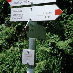 Klösterle-Thüringer Alpe, neuer Wegweiser / Helmut Tiefenthaler von Tiefenthaler, Helmut