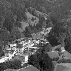 Dornbirn, Steinebach, Firma FM Hämmerle von Alpine Luftbild GmbH
