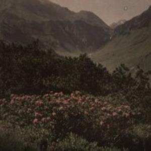 Bei Stuben am Arlberg / Fotograf: Norbert Bertolini von Bertolini, Norbert