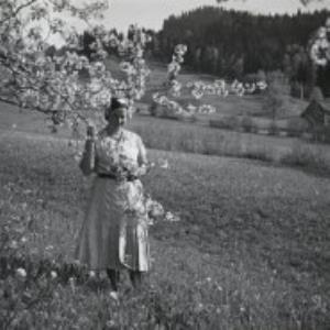 Bödele, Winsau / Fotograf: Norbert Bertolini von Bertolini, Norbert