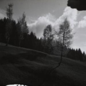 Dornbirn, Winsau / Fotograf: Norbert Bertolini von Bertolini, Norbert