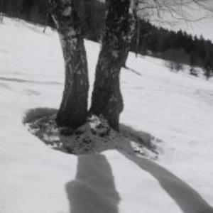 Winsau, Bödele / Fotograf: Norbert Bertolini von Bertolini, Norbert