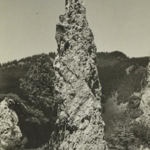 Hohenems Kletterei am kl. Löwenzahn von Nipp, J.
