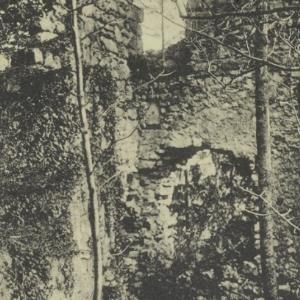 Partie aus den Ruinen von Schloss Neuburg b. Koblach von [Verlag nicht ermittelt]