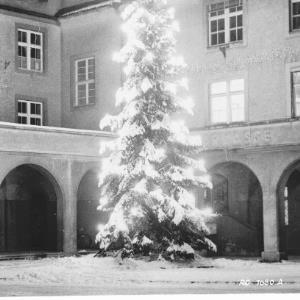 Frohe Weihnachten und ein glückliches neues Jahr von Rhomberg