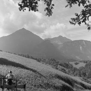 Dornbirn, Wiese / Franz Beer von Beer, Franz