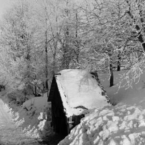 Dornbirn Kehlegg, Winterlandschaft / Franz Beer von Beer, Franz