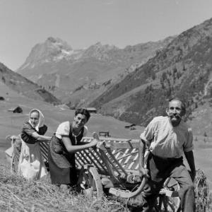 Warth, Heuernte / Franz Beer von Beer, Franz