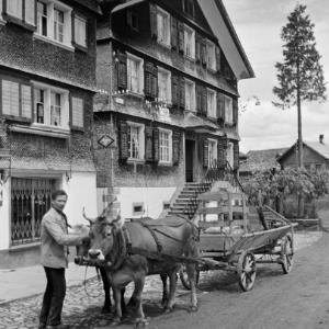 Schwarzenberg, Fuhrwerk mit einer Kuh als Zugtier / Franz Beer von Beer, Franz