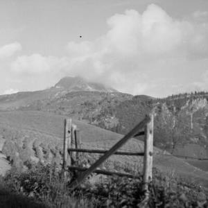 Warth - Hochkrumbach, Forstgarten / Franz Beer von Beer, Franz