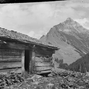Warth, Steffis Alpe / Franz Beer von Beer, Franz