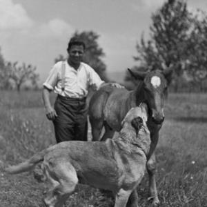 Bauer mit Pony und Hund / Franz Beer von Beer, Franz