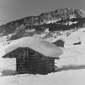 Au, verschneiter Stadel / Franz Beer von Beer, Franz