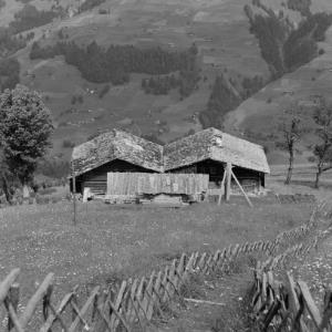 Sonntag- Stein, d' Wiesa / Franz Beer von Beer, Franz