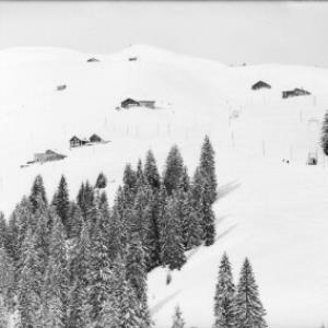 Damüls - Skigebiet von Risch-Lau