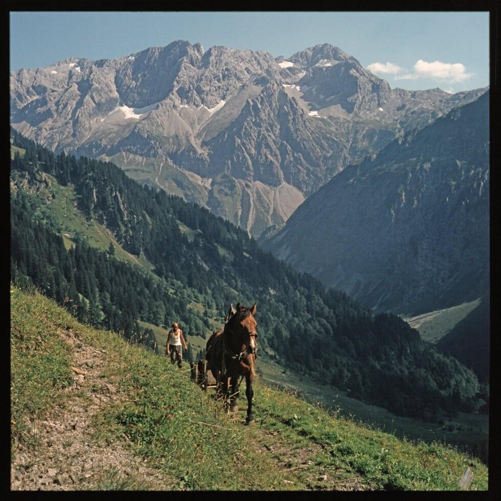 Alpe Ischkarnai / Helmut Klapper